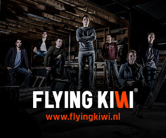 Flying Kiwi 336×280