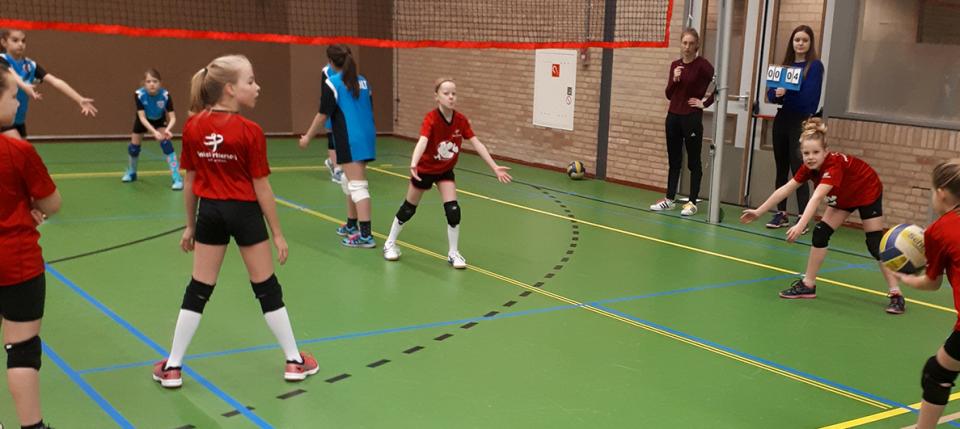 Scholentoernooi Volleybal