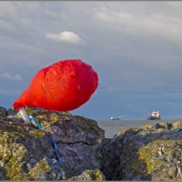 Motie op verbod ballonnen oplaten aangenomen
