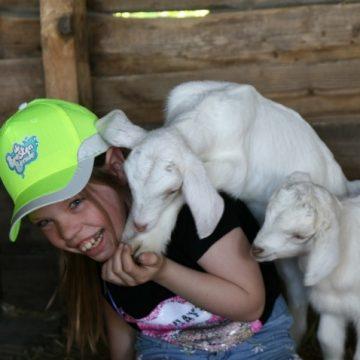 Uit liefde voor dieren: jeugdige Boekelnaren bestrijden zwerfafval